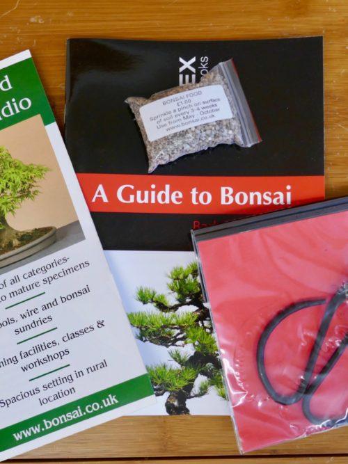 Bonsai Gifts