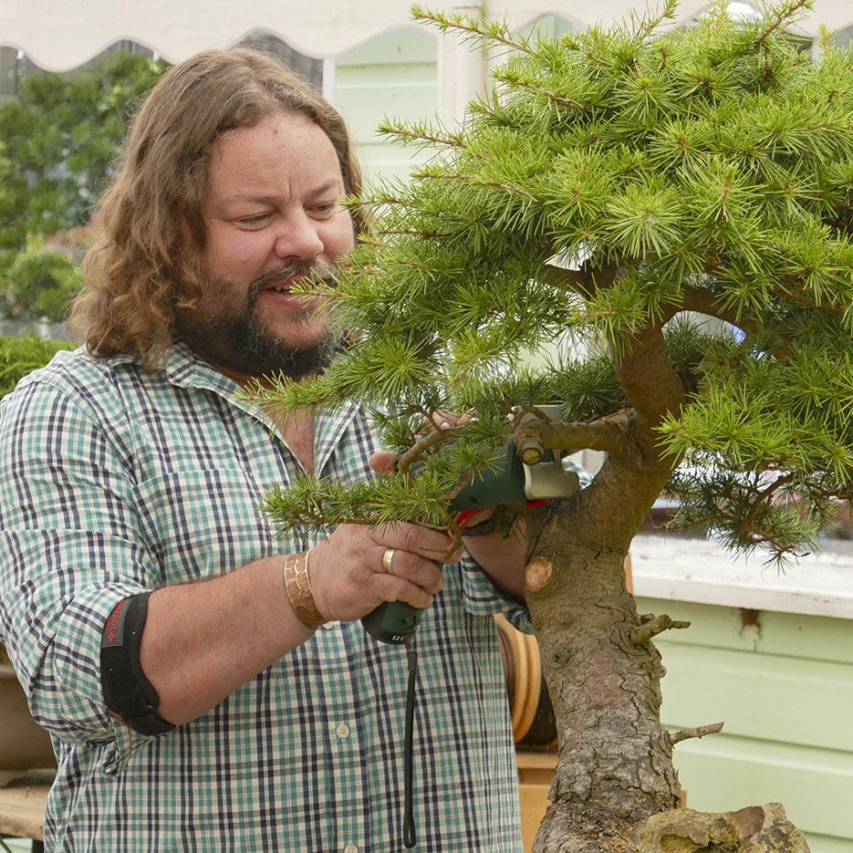 greenwood-bonsai-studio-017